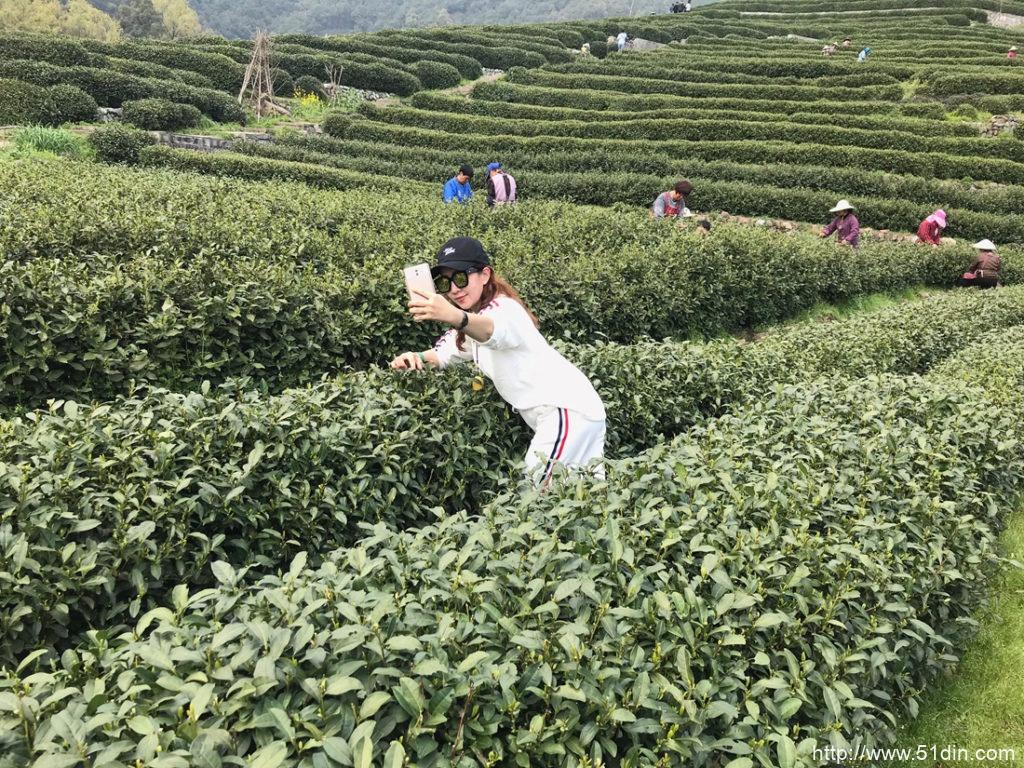 龙井是位于杭州西湖西部山区的一个小村庄-龙井茶