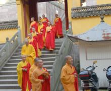 僧侣在大佛寺上课。