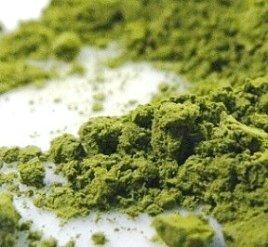 为什么抹茶与其他绿茶有如此不同?-龙井茶