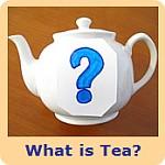 什么是茶?